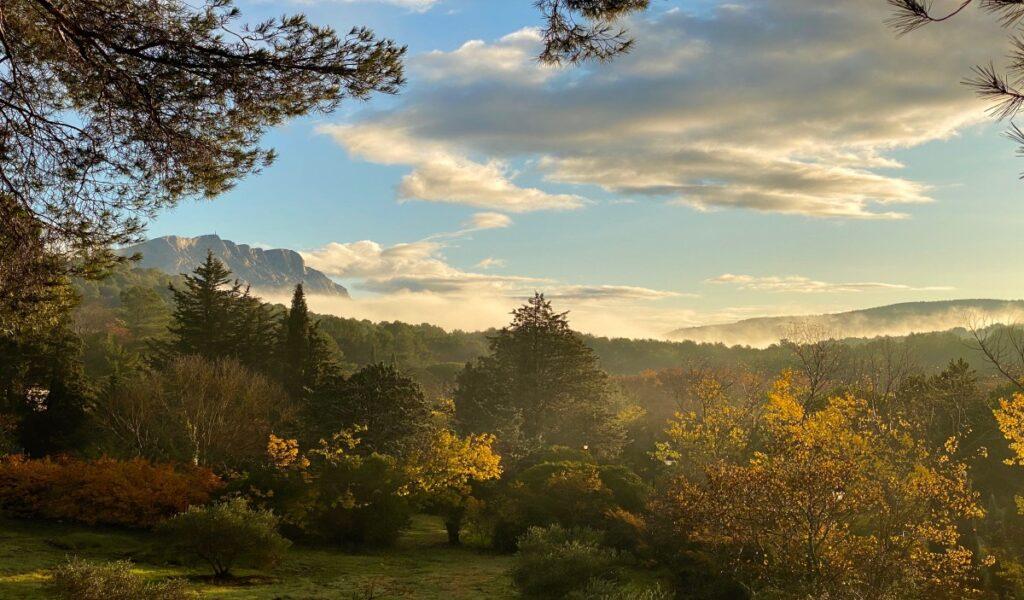 Aix-en-Provence landscape with trees