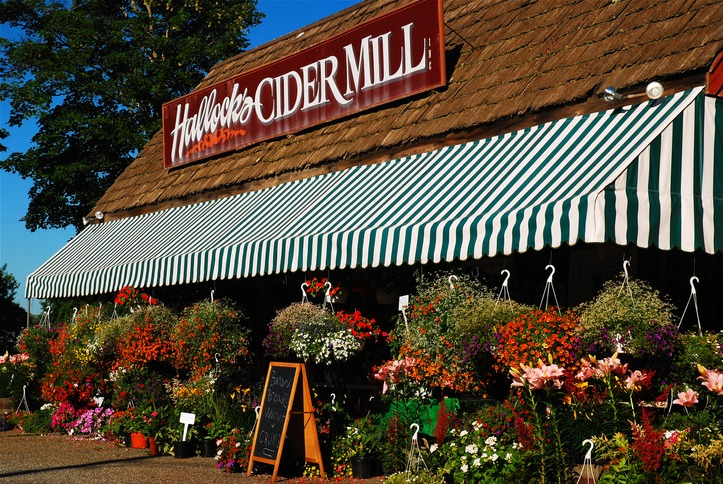 Cider Mill in Long Island